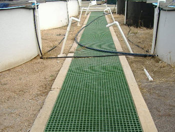 Aquaculture FRP Trench Cover Grating